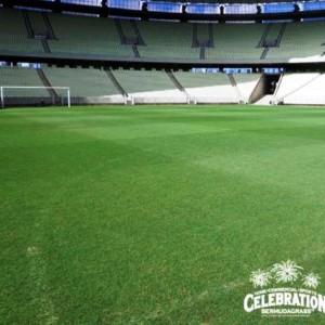 Campo De Grama Celebration