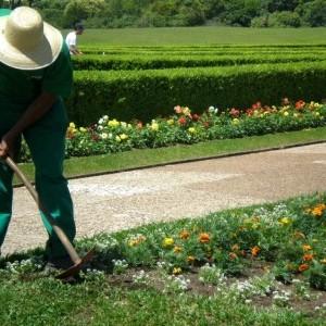 Conservação De Jardins