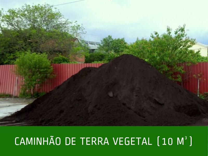 _CAMINHÃO-DE-TERRA-VEGETAL-(10-M-)
