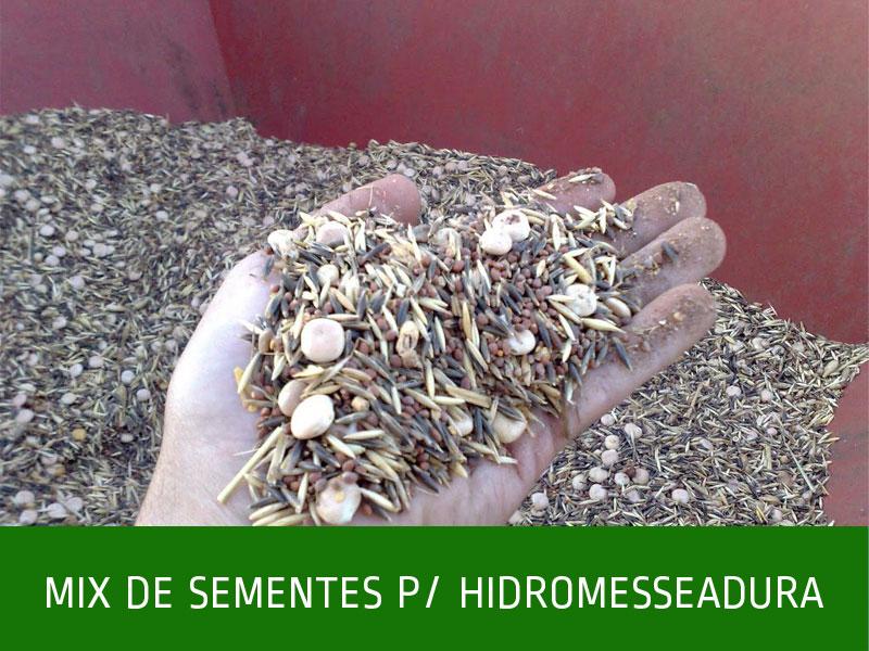 _MIX-DE-SEMENTES-P_HIDROMESSEADURA