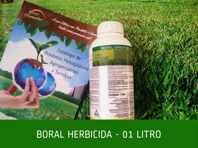 Boral Herbecida