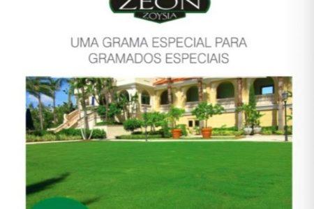 Grama-Zeon-para-a-loja-2017-600x600